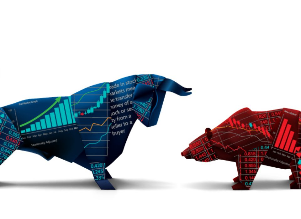 Bull and bear market example stock market IPO